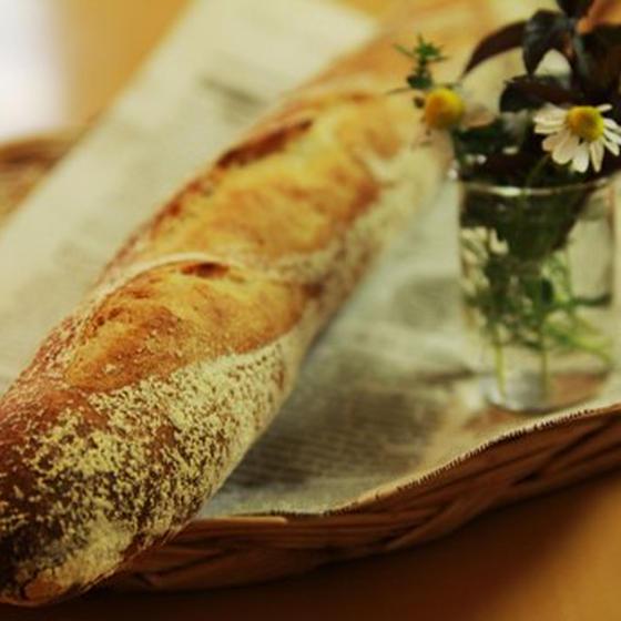 BreadSchoolパンの木
