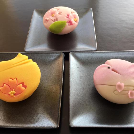 本格和菓子教室「枝折」(しおり)