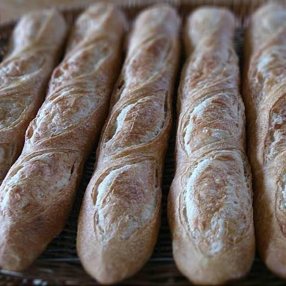 理論で学ぶ資格と天然酵母の手ごねパン教室PAPUCO