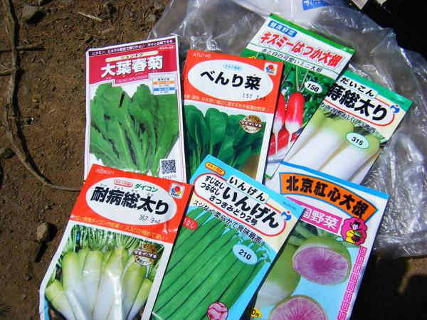 今年も野菜作りがんばってます!!
