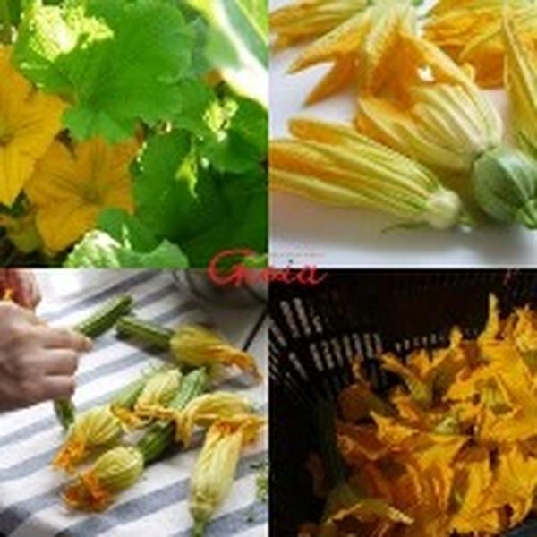ズッキーニの花 珍しいイタリア野菜も登場
