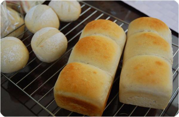 『パン体験』ミニ食パン&プチパン