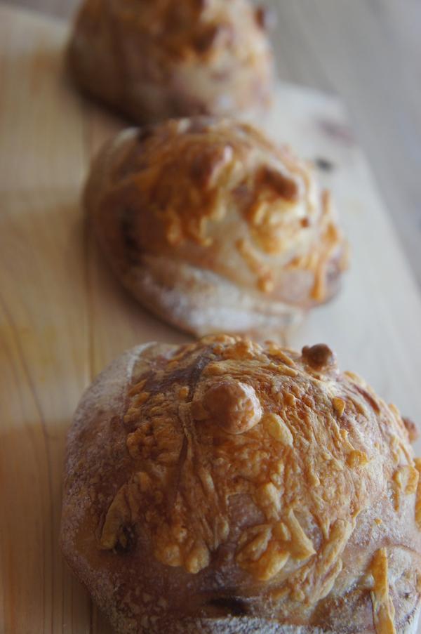 酵母チーズカンパーニュ