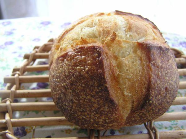おとうふパン