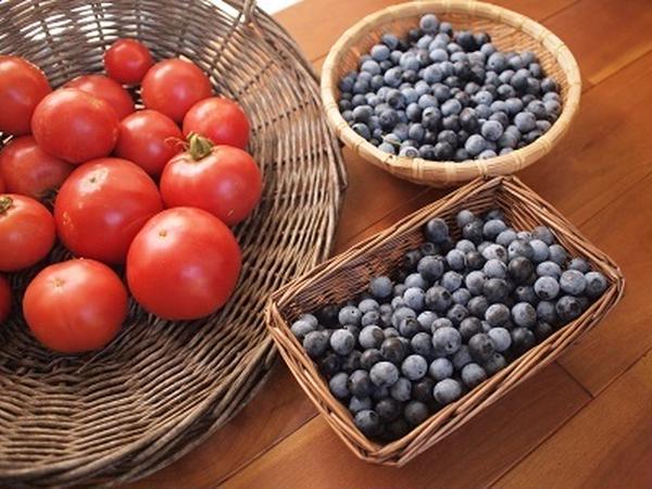 庭で採れたブルーベリーやトマトで季節のお料理も作ります