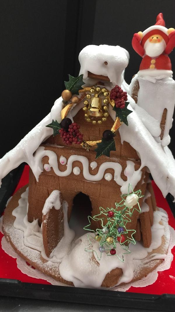 お部屋のクリスマスの飾りにいかがですか?