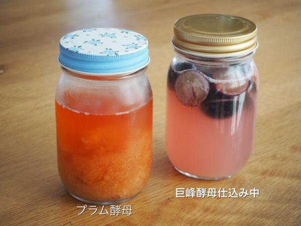 季節のフルーツで起こす酵母は 香りが抜群