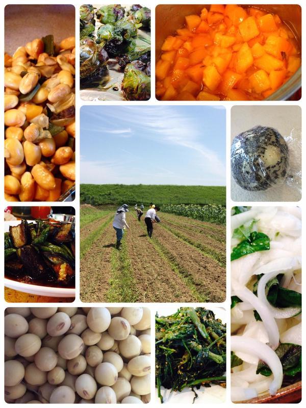 収穫&料理教室