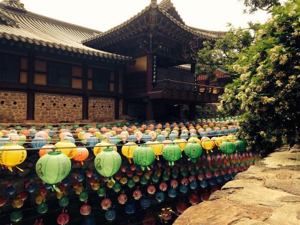 ソウルにはない地方ならではの風景です。