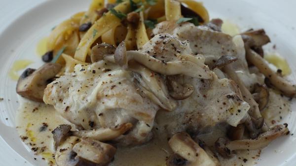 鶏ときのこのフリカッセ ポルチーニ茸のタリアテッレ添え