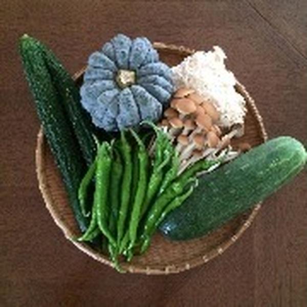 旬の野菜、栄養、時短調理法などのレッスンも