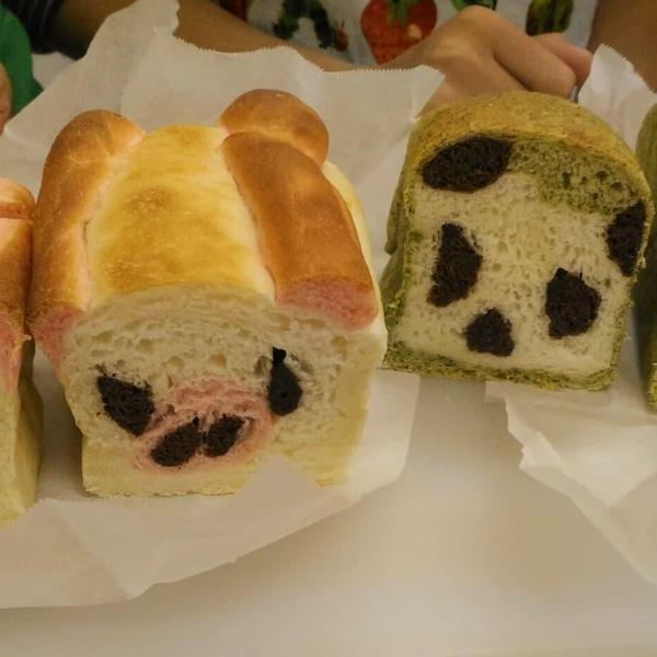 親子パン教室でパンダ食パンとぶた食パン♪