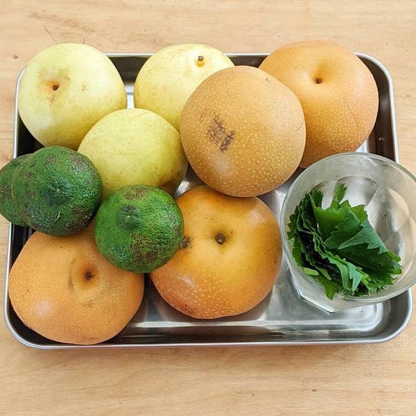 豊水、20世紀、柚子、大葉のコールドプレスジュース