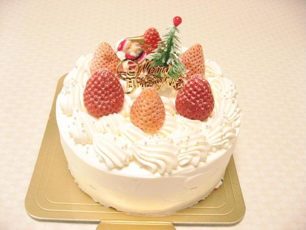 単発レッスン クリスマスケーキ